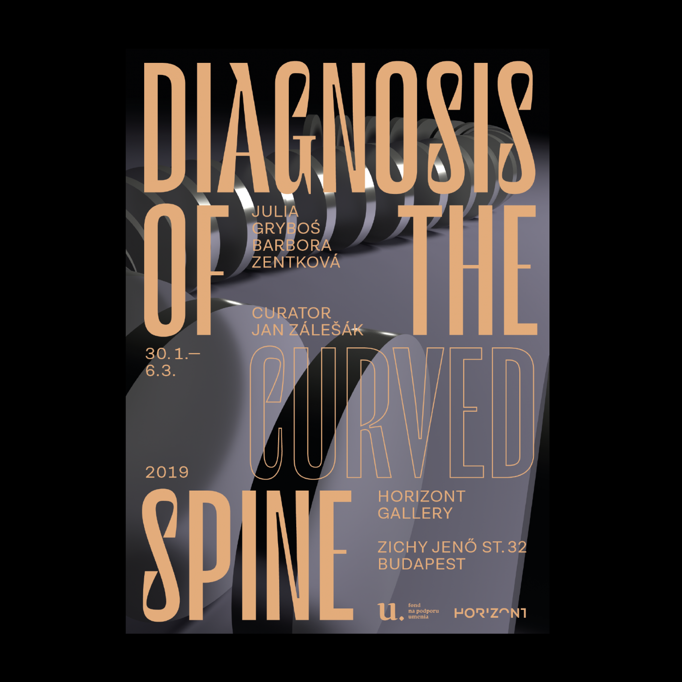 Diagnosis of the curved spine poster